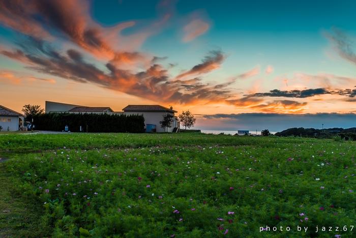 温泉施設もあるので、ゆっくり1日の疲れを癒してから帰宅することが出来ます。四季折々の美しい草花が咲き誇っているので、カメラ片手に楽しむのもおすすめです。