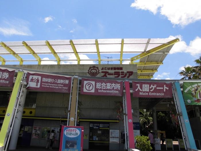 神奈川県横浜市にある「よこはまどうぶつ園ズーラシア」は、世界中の珍しい動物がいっぱい暮らす、日本最大級の新しいタイプの動物園です。アジアの熱帯林やオセアニアの草原など、動物たちの生息地域別に様々なエリアを設置。各エリアでは世界各地で暮らす希少な動物を間近に見ることができます。