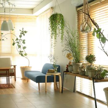 このコーディネートも先に紹介したように、中心となる背の高いものを据えて、すっきりとまとめています。  開口部が「腰高窓」の場合は特に、植物によく陽が当たるように、テーブルや棚を利用して鉢を置いてあげましょう。