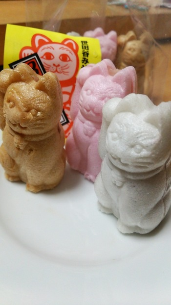 世田谷区の認定おみやげになっているという「亀屋」には、かわいらしい招き猫の「招福もなか」があります。 最中の色でそれぞれ白あん・つぶあん・こしあんと、中身のあんも分かれています。