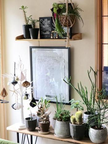 壁際にぴったりな細長いテーブル。  背の高さを変えて上手に飾っています。 このテーブル上で中心となっているのは、右側のボリュームのある枝の鉢ですが 壁に飾った額、左端のツリーのオブジェ、上の棚とのレイアウトのバランス感も含めて、素晴らしいコーディネートの例です。