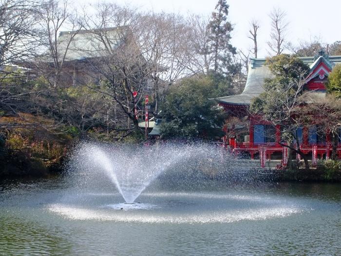 本当はまだまだあるんです!吉祥寺の魅力。 ぜひ皆さんも足を運んで自分流に楽しんでみて下さい。