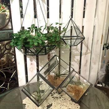 アイアンフレームとガラスの組み合わせがとてもスタイリッシュですね。  大きめのハンギングプランターを使えば、寄せ植えなども吊るすことができます。