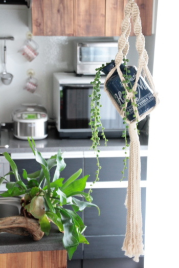 ホーローを使った素敵なハンギンググリーンです。  グリーンネックレスは吊るす植物として代表的なもの。素朴なホーローにうまくマッチしています。