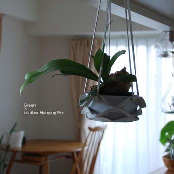 鉢をぶら下げるという手法は、誰しも一度は目にしたはずです。  天井からぶら下げれば、場所をとらずに、空間を生かして、グリーンを取り入れることが出来ます。  器に工夫を入れて、あなたらしく空間を演出しましょう。