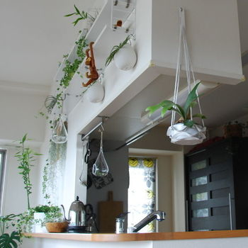 いろいろなところからいろいろなものを吊るして。  空間の隅々まで使いこなしているという雰囲気が素敵ですね。