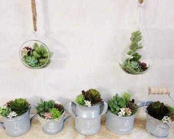 空中に浮かんでいるようなグリーン。  多肉植物や苔を使ったテラリウムも人気ですが、ガラス容器を上から吊り下げると、眺めやすく手入れがしやすいものです。