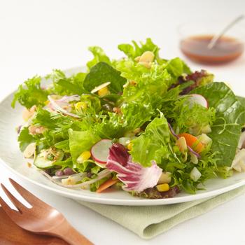 『緑の30品目サラダ』  一見シンプルなグリーンサラダですが、家庭の食卓にはなかなかあがらない素材、味わいのあるドレッシングがポイント。いつもとひと味違う上質なサラダを食べたい方に。