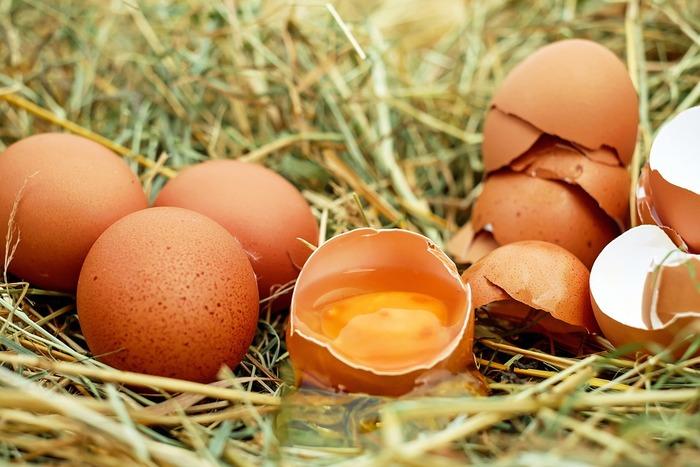 卵、牛乳、野菜やフルーツなど、北海道らしい食材をふんだんに使ったプリン、ゼリー、アイスクリームは絶品ばかりです!