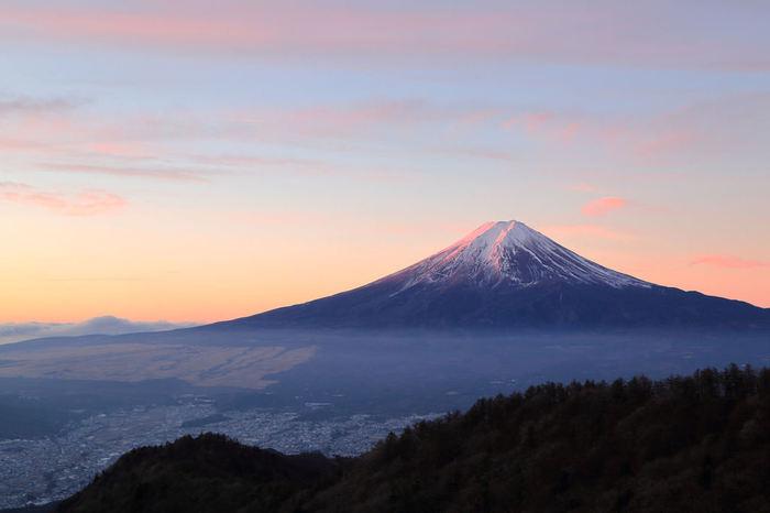 お気に入りのお土産は見つかりましたか? 静岡県を訪れたときには、是非買ってみてくださいね♪