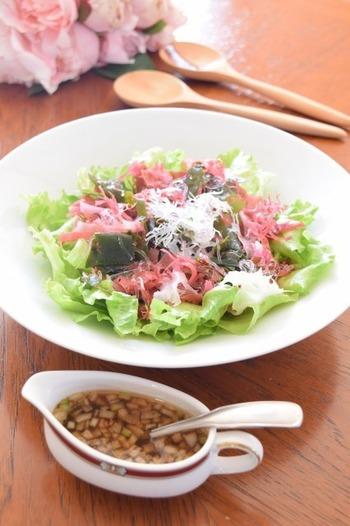 栄養豊富で「海の野菜」とも言われる海藻。ご紹介したなかで気になるレシピがありましたらぜひ作ってみてくださいね♪