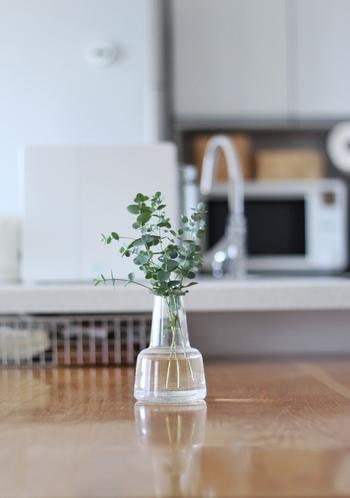 ガラスの器に飾ると爽やかな雰囲気になります。ユーカリの持つ独特な香りのイメージにガラスはよくマッチしています。