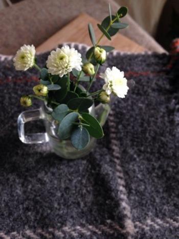 小さなじょうろか醤油さしのようなガラスの器に、こぢんまりとユーカリを生けています。つぼみのお花があると、いつ開くかと毎日ワクワクできそうです。