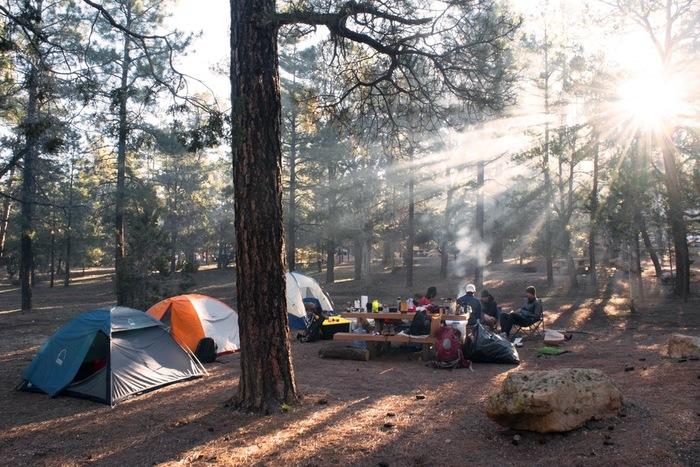 木々の緑が生い茂る爽やかな季節は、ピクニック、キャンプ、ハイキング、バーベキューなど自然の中でアクティブに活動する機会が増えますよね。海、山、川、公園でアウトドアを楽しむ方も多いのではないでしょうか?