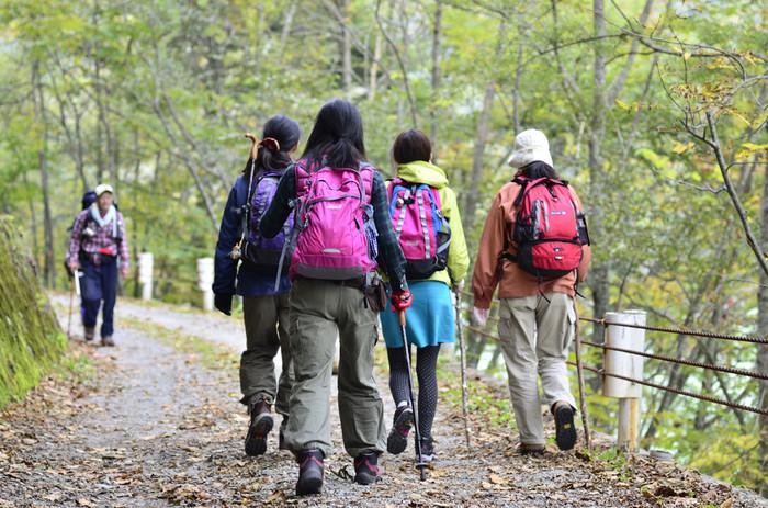 足元の悪い道や、長時間歩く場合には、トレッキングポールがあると無いとでは大きく違ってきます。膝にかかる負担も軽減してくれます。登る山のクラスや道を確認してから、持っていた方がいいかどうかを決めましょう。
