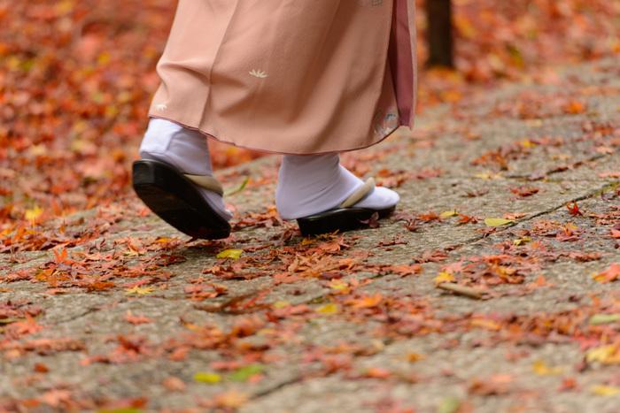 腹ごしらえも済んだので、さっそく紅葉散歩を始めましょう♪