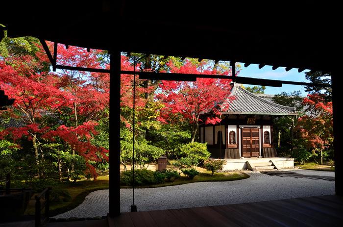 花見小路をそのまままっすぐ突き当たれば、建仁寺に到着です。 カフェで休まった体を動かして、紅葉を楽しみましょう♪  建仁寺はお庭がとても素敵です。