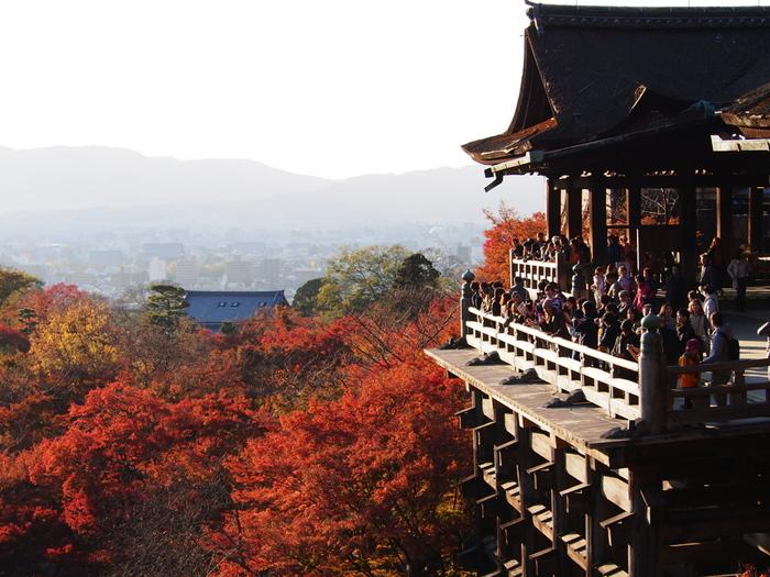 坂を上っていった先にあるのは、京都の紅葉スポットベスト5に入るであろう、清水寺です。 清水の舞台の下には、燃えるような紅葉が広がっています。
