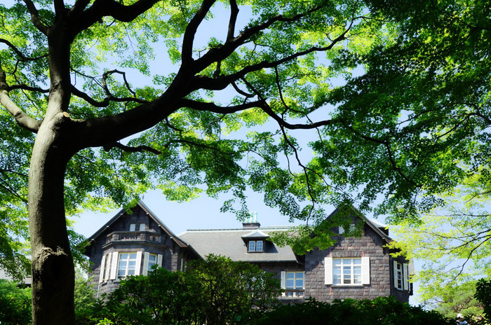 大正6年に竣工された古河虎之助男爵の邸宅。洋館と洋風庭園の設計者は、英国人ジョサイア コンドル博士です。