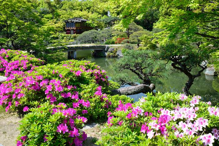 兵庫県神戸市にある相楽園は、1941年に開園された日本庭園です。登録記念物にも指定されている相楽園の池泉回遊式日本庭園では、深山幽玄とした雰囲気が漂っており、まるで浮世絵のように素晴らしい景色が広がっています。