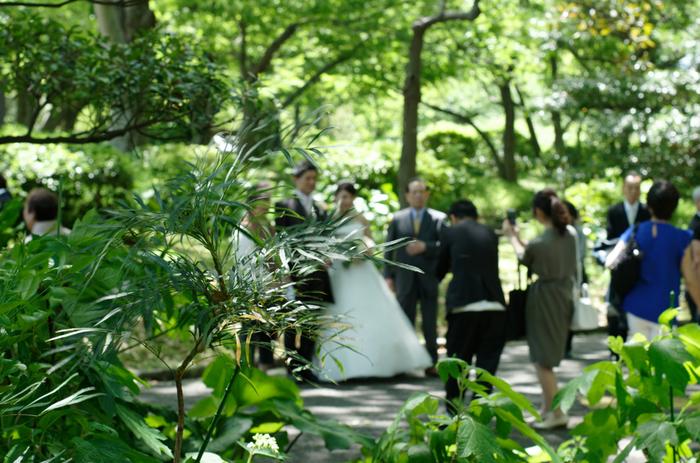 ガーデンでの挙式&パーティーも人気です。緑に包まれた景色の中、素敵なひとときが過ごせそうですね。
