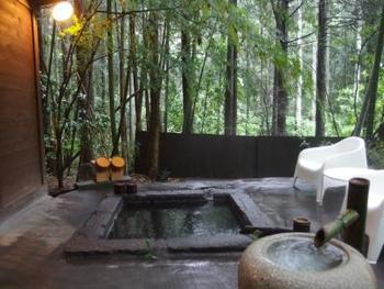 専用風呂以外にも、敷地内には8つの温泉が点在しています。どの温泉も、全て貸切可能。もちろん、こちらの大露天風呂も貸切利用可能です。