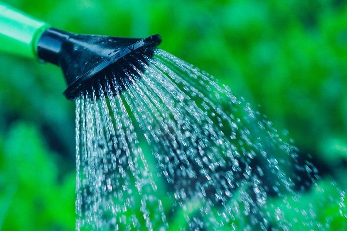 水やりは、鉢植えの場合は土の表面が乾いたらたっぷりあげます。冬は回数を少なくします。また、地植えの場合は基本的に水やりの必要はありません。  肥料は、元肥として緩効性化成肥料を土に混ぜ込んでおきます。その後、地植えの場合は追肥の必要はありませんが、鉢植えの場合は秋に追肥をすると花がたくさん咲きます。
