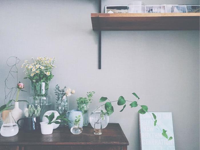 小さなサイドテーブルに設えた、私だけの植物園。  植物の大きさが同じなら、器のフォルムや大きさ、高さを変えて動きを出してみましょう。