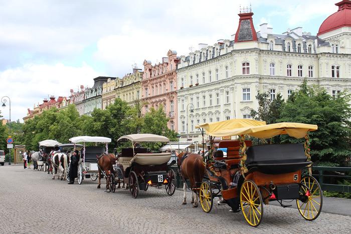 石畳が敷かれた街の広場には、壮麗な建物が立ち並んでいます。美しい街並みを眺めていると、ゲーテ、シラー、ベートーヴェン、ゴーゴリ、ショパンといった著名人がこの街に魅了され、滞在していた理由が分かるような気分になってきます。