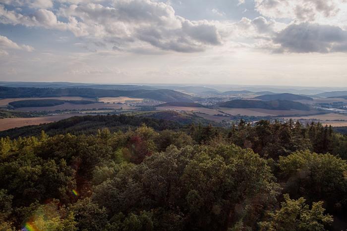 モラヴィア地方は、草原だけでなく豊かな森も広がっています。こんもりとした緑の森は、モラヴィア地方の豊かな自然を象徴しているかのようです。