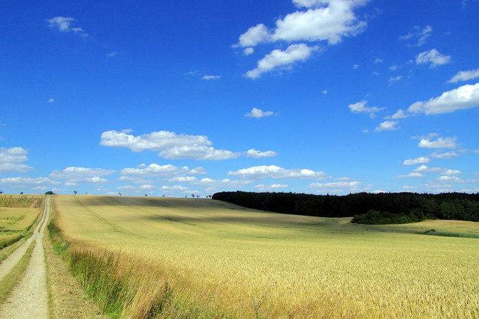 抜けるような青空、黄緑色の絨毯のような草原、空に浮かぶ白い雲、地平線まで続く地道が織りなす景色は絶景そのものです。