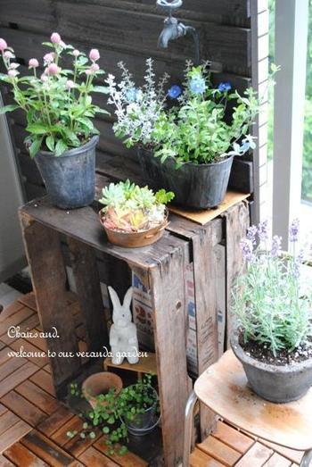 インテリアや植物もバランスよく配置されていて、それぞれの存在感を魅力的に見せていますね。グリーンのお洒落なレイアウトも、さっそく真似したくなります☆