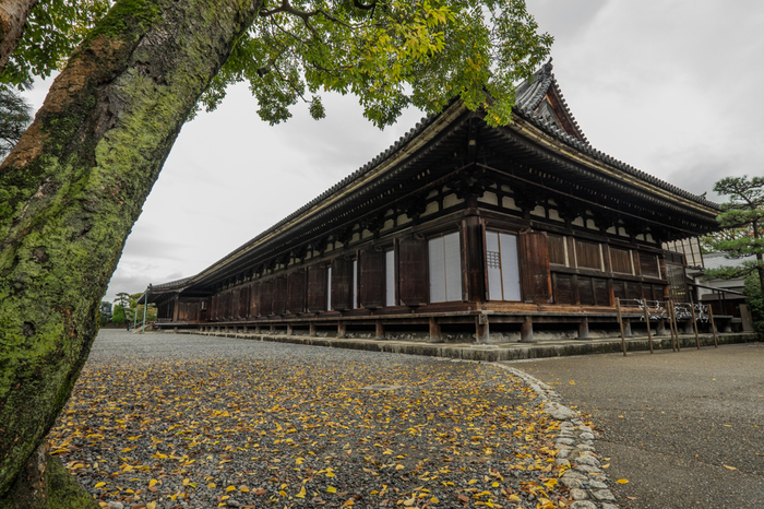 【京都屈指の観光名所「三十三間堂」】