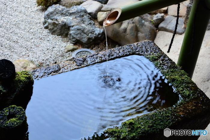 """秀吉が淀殿の父・浅井長政の菩提寺として、文禄3(1594)年に建立したもので、""""血天井""""のある寺として良く知られています。【三十三間堂・東大門前の通り。左手前が「養源院」。】"""