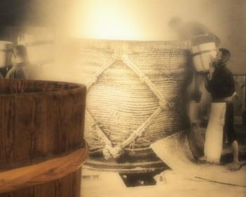 酒造りは、日本の伝統飲食文化。良質な米とこうじをもとに、時を重ねた酒桶で醸造されます。職人さんの手は、きっとすべすべでしょうね!
