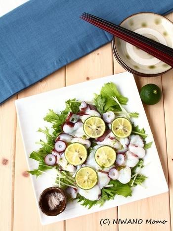 日常的に手に入る魚介類のひとつとして、日本人の食生活に欠かせない「たこ」。美味しいのはもちろん、低カロリーで栄養豊富な食材であることをご存じでしょうか?