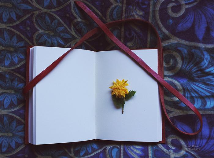 1.仕上がりをイメージして、花と葉を分け、下処理をしておく。 2.花を並べる。ティッシュなどの紙の上に置くと本が汚れません。 3.ティッシュなどの紙を重ねる。 4.花がたくさんある場合は2と3を繰り返す。 5.重しとしてさらに本をのせる。