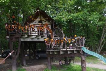 こちらはオートキャンプ場の「北軽井沢スウィートグラス」。宿泊できるツリーハウスの他、中に入って遊べるツリーハウスがいくつもあります。