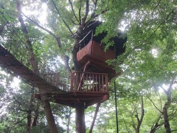 神奈川県「茅ヶ崎市市民の森」にあるツリーハウス。敷地内にはターザンロープやロッククライミング遊具など自然と触れ合えるアスレチックも充実しています。  なお、ツリーハウスは5~10月は毎日利用できますが、11~4月は土日祝のみなのでご注意ください。