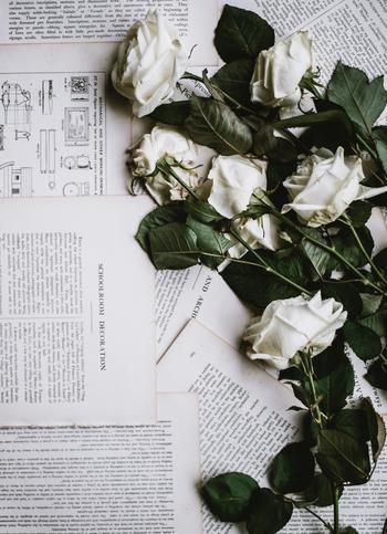 花を嫌いだという人はあまりいないため、贈り物として人気のある「お花」。相手の誕生花を花束にして贈っても喜ばれそうですね。