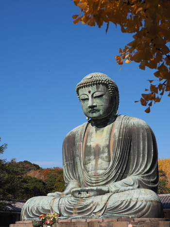 都心から約1時間で行くことができる古都鎌倉。秋も深まりこれからのシーズン、訪れる方も多いのではないかと思います。