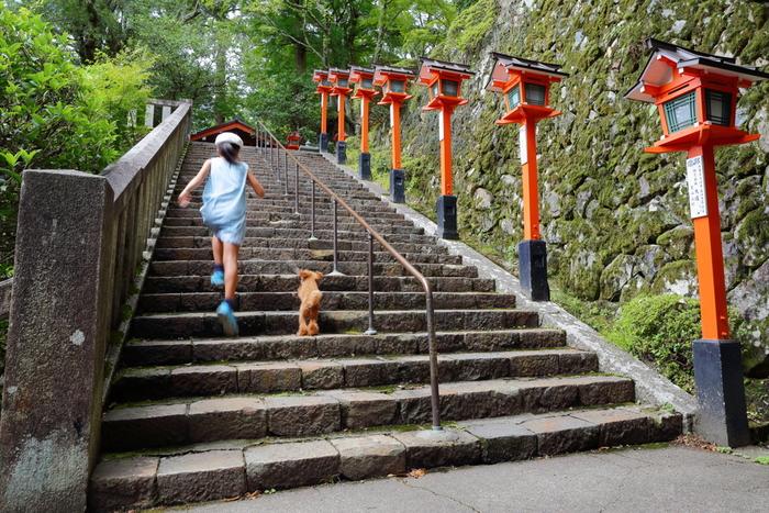 今回は、世界的都市京都の、子どもと一緒に楽しめるおすすめスポットをご紹介します。 子どもも大人も、楽しみながら日本の歴史を感じて浸ることができるはずですよ。
