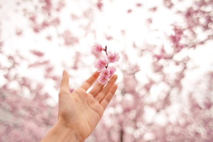 春の柔らかな陽だまりを想像するだけでテンションUP♪そんな春は、いつもと少し違う装いもチャレンジしやすい季節です。