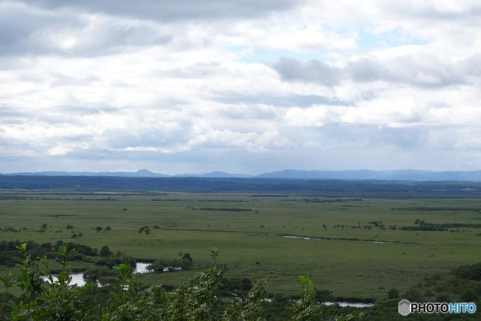 四季折々で美しい景色を見せてくれる釧路湿原は、日本最大の湿原であり、湿原そのものが国の天然記念物に指定されています。