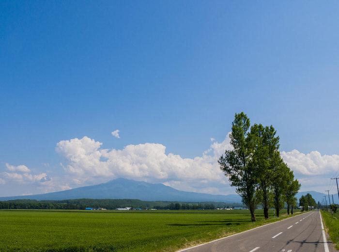 かつてアイヌ語で「オンネヌプリ(年老いた山)」と呼ばれていた斜里岳は、標高1574メートルの活火山です。知床連山の中間にそびえ立ち、美しい山容を持つ斜里岳は、日本百名山の一つにも数えられており、アルピニストの間でも人気がある山です。