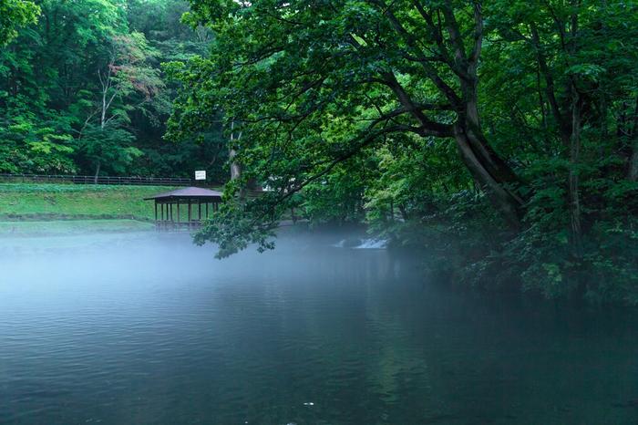 京極町は、羊蹄山から伏流水が絶え間なく湧き出す名水の町としても知られています。名水百選にも指定されているふきだし公園からは、毎日8万トンもの水が湧き出しています。