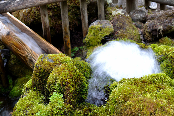冬は豪雪地帯となる京極町ですが、ふきだし公園の湧水は、年間を通じて6.5度前後の水温を保っています。白いしぶきを散らしながら絶え間なく湧き出す水は、北海道の雄大な自然の恵みを象徴しているかのようです。
