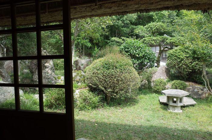 お庭もきれいに整備されていて、夏は涼しいのでいつまでも滞在出来ます。