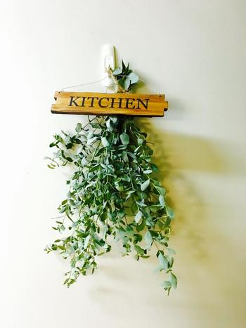 キッチンにもドライフラワーを! 毎日立つ場所だからこそ、ちょっと植物があるだけでも、気持ちがほっこりしますよね♪ ドライフラワーならお手入れもいらないので、めんどくさがり屋さんにもオススメですよ。