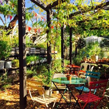 春から夏に向けて、ますます訪れたくなるソルソファーム。 都内からのアクセスも良く、緑が豊富なんて、本当に贅沢ですよね。